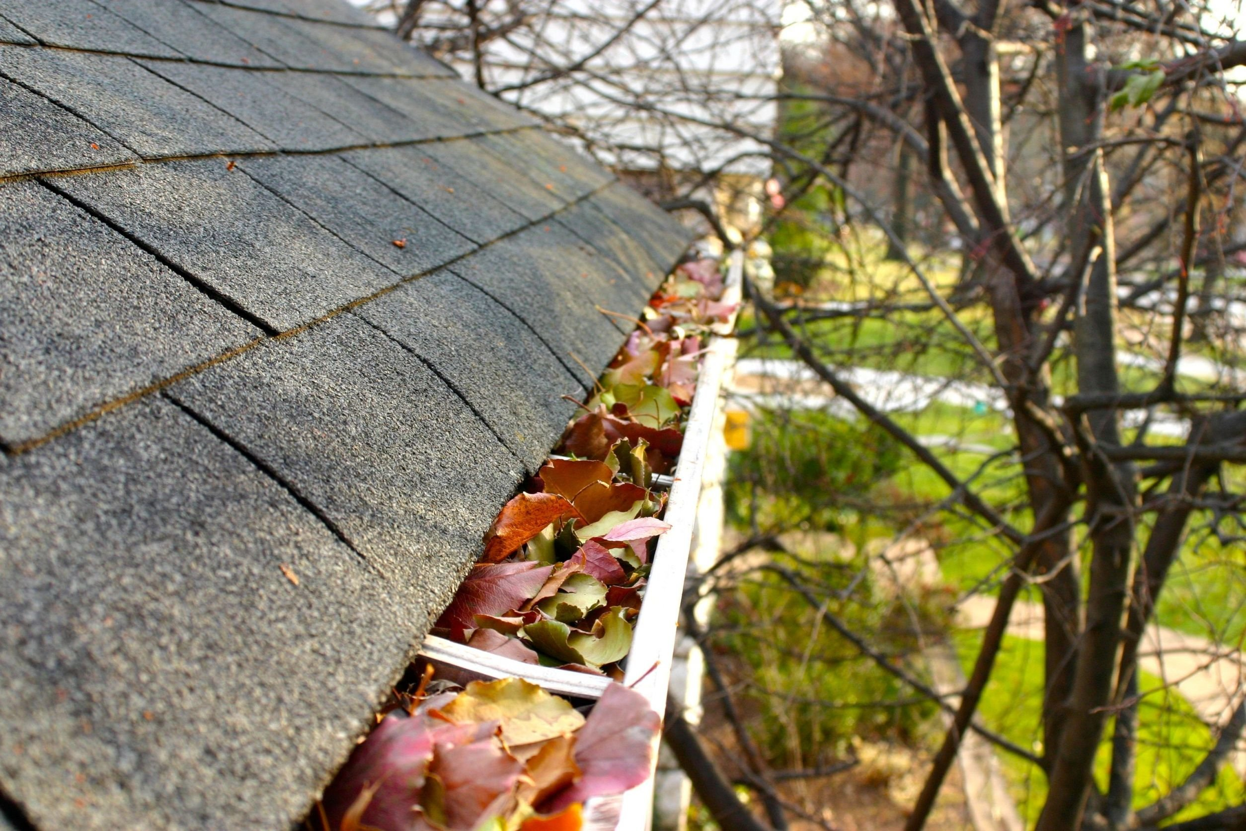 cleaning gutters from the roof